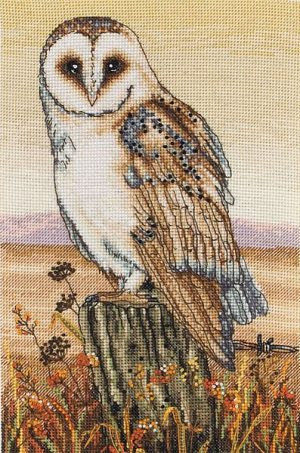 Набор для вышивания крестом ANCHOR «Совиные горизонты»