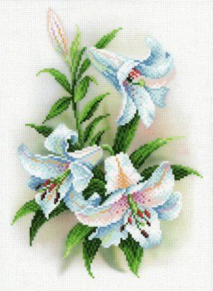 Канва Аида 14 с нанесенным рисунком-схемой М.П. Студия «Благоухающие лилии»