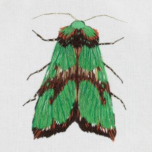 Набор для вышивки гладью PANNA «Зеленый мотылек»