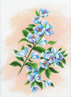 Рисунок-схема М.П. Студия «Яблоневый сад»