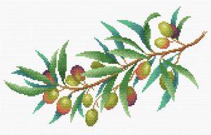 Набор для вышивания крестом М.П.Студия и Жар-птица «Ветка оливы» СК-114
