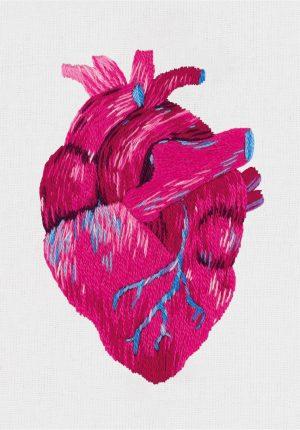 Набор для вышивания Panna «Анатомическое сердце» JK-2195