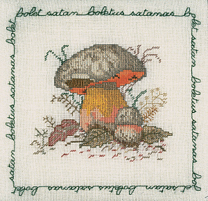 Набор для вышивания крестом Le Bonheur Des Dames «Bolet satan» 1686