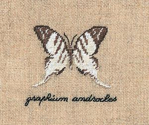 Набор для вышивания крестом Le Bonheur Des Dames «Papillon: graphium» 3623