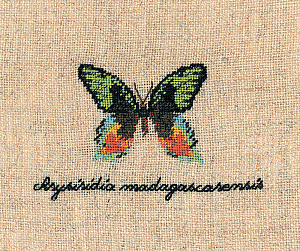 Набор для вышивания крестом Le Bonheur Des Dames «Papillon: chrysiridia» 3624