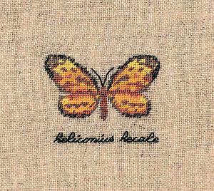 Набор для вышивания крестом Le Bonheur Des Dames «Papillon: heliconius» 3626