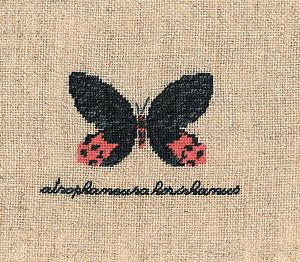 Набор для вышивания крестом Le Bonheur Des Dames «Papillon: atrophaneura» 3625