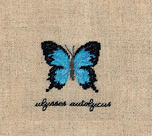 Набор для вышивания крестом Le Bonheur Des Dames «Papillons ulysses autolycus» 3628