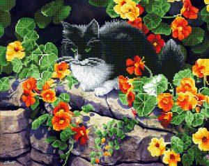 Алмазная мозаика Фрея «Пригрелся на солнышке» ALV-70