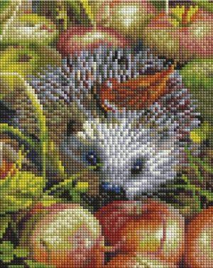 Алмазная мозаика на подрамнике Белоснежка «Яблочный ежик» 540-ST-S