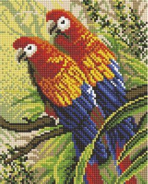 Алмазная мозаика на подрамнике Белоснежка «Попугаи» 548-ST-S