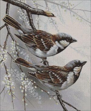 Алмазная мозаика на подрамнике Painting Diamond «Два воробушка» GF2394