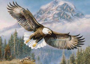 Алмазная мозаика на подрамнике Painting Diamond «Орел» GF2335