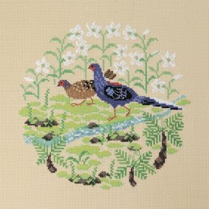 Набор для вышивки крестом Xiu crafts «Тайваньский фазан» 2030409