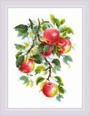 Набор для вышивания крестом Риолис «Наливные яблочки» 1938