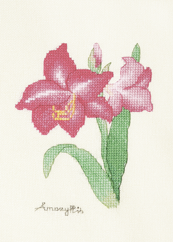 Набор для вышивки крестом Xiu crafts «Амариллис» 2032402