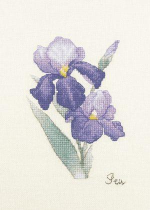 Набор для вышивки крестом Xiu crafts «Ирис» 2032406