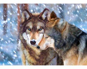Алмазная мозаика РТО «Волк и волчица» DE7088