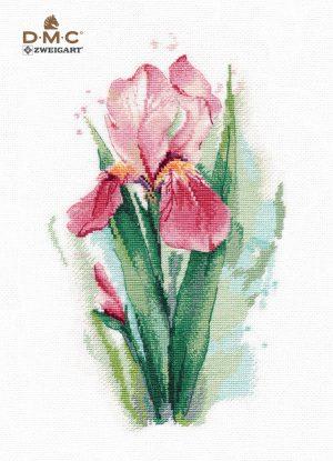 Купить нбор для вышивания крестом Овен «Розовый ирис» № 1424